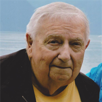 Virgil M. Shagena