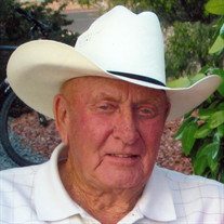 Mr. Elroy Elmer Davies