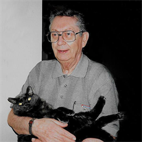 Alan Davies obituary