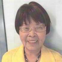 Shizuno Shildt