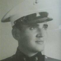 Everett Emereson Stewart