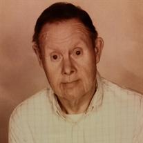 Mr. Raymond Goodman