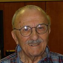 Sidney Goldstein