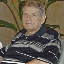 Mr. John Lee Reisinger