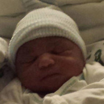 Baby LaShaun D Lamar Jackson