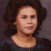 Elvia Livar Rodriguez