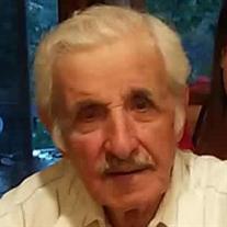 Ralph Grimaldi Sr