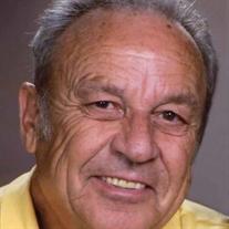 Michael V. Dixon
