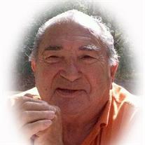 Vincent James Lamano Sr.