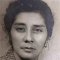 Mrs. Elvira Castillo