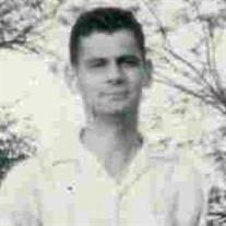 Ray L Wolfgang