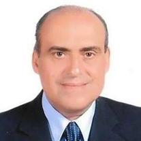 Farid Naguib Guirguis Ibrahim