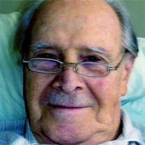 Mr.  Jozsef Laszlo Rozsa