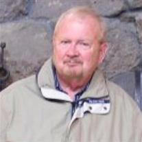 David E. Domer