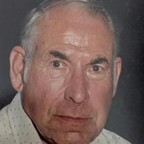 Palmar Felix Turnblom