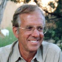 David Gelsanliter