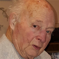 Mr Harold J Fleming Jr.