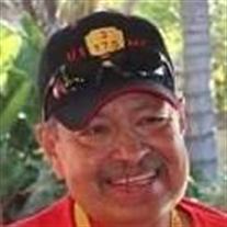 Joe Martin Luz