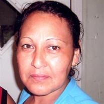 Ms. J. Lorena Argueta