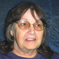 Cheryl Ann Ginter-Meister