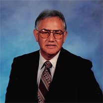 Mr. Lucio R. Villa Jr.
