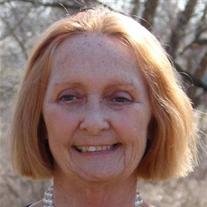 Sherry Ann Snyder