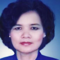 Sue M. Nguyen
