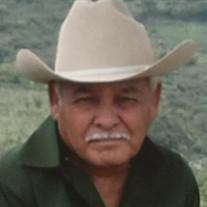 Jose A Velez
