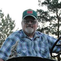 Dennis Dwight Sebring