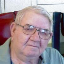 Richard L Steckel