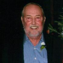 Daniel E Palmer