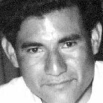 Jose Arizpe