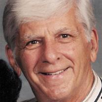 Peter N. Salamino