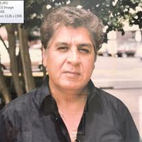 Roy R. Guerra