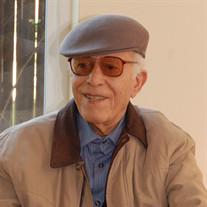 Hassan  Dibadin