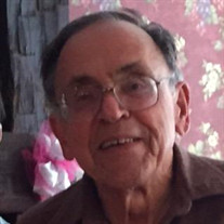 Edward H.  Stevens