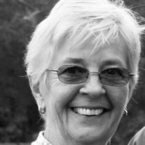 Robin Jill Dayton