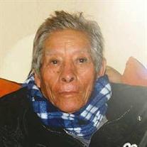 J. Luz Garcia Gutierrez