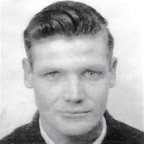 Mr. Robert E. McElheny