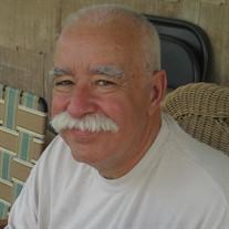 Mr William Palermo
