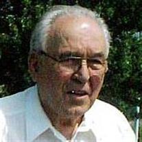 Mr. Cecil Robert Fitzgerald