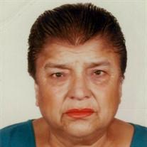Teresa Perez-Armenta