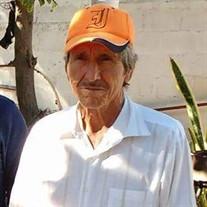 Adolfo Figueroa Salas
