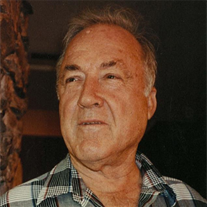 Mr. Norman Elroy Weber