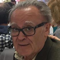 Mr. Ilija Grubisich