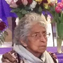 Clorinda  M. Salazar