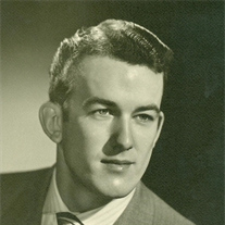 Mr. Carl John VanDam