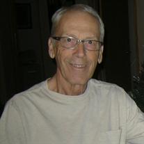 David Lorne Mannington