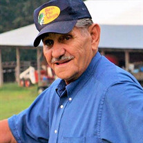 Alfred S.  Starnes of Enville, TN formerly of Michigan City, IN
