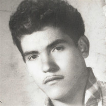 Ignacio Barboza-Mendez
